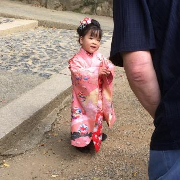 Japan 8